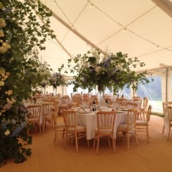 Weddings - Marquee